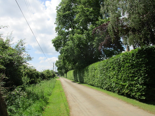 Road to Lower Farm, Halse
