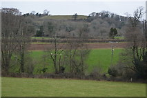 SX4861 : Farmland in Coombe Valley by N Chadwick