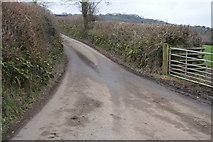 SX4761 : Lane junction by N Chadwick