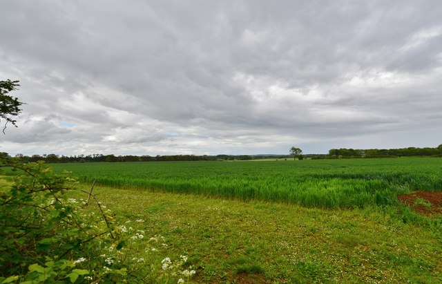Hanwell: Farmland