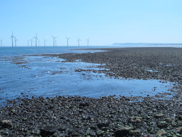 Rocks exposed at low tide east of the South Gare Breakwater (2a)