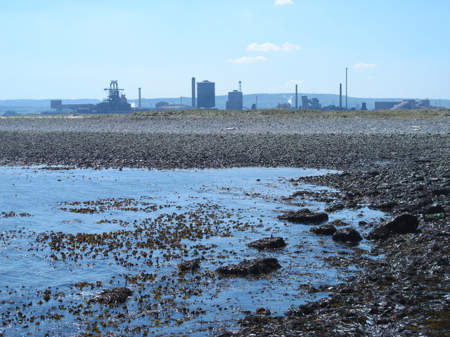 Rocks exposed at low tide east of the South Gare Breakwater (3)