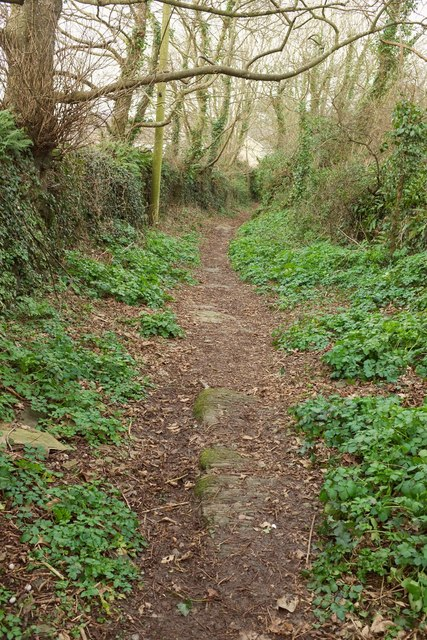 Path to Treneague