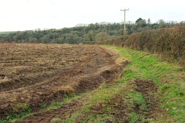Field east of Polmorla