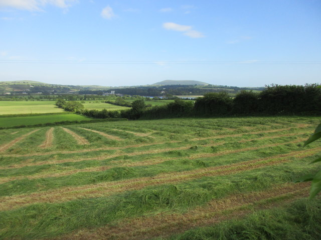 Hay field above the River Barrow