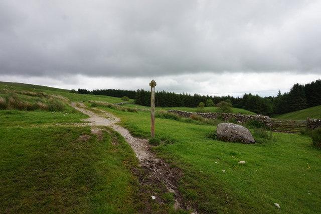 12-11pm path towards High Birkwith