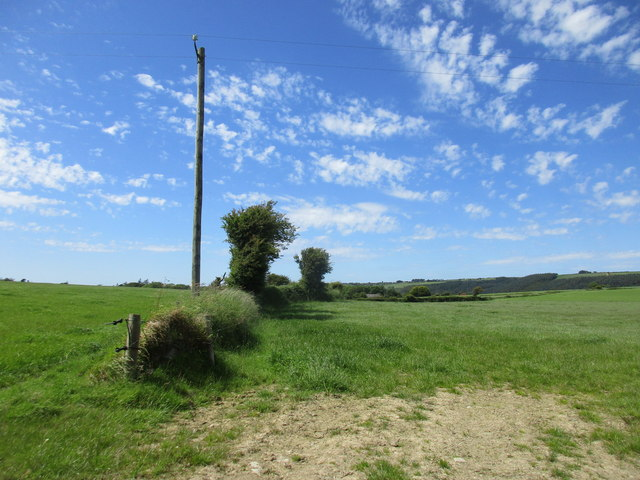 Field boundary near Ballinvarrid