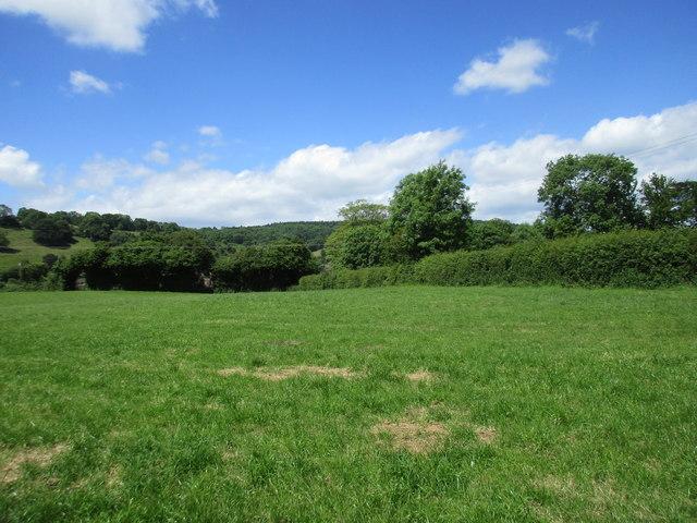 Grass field near Mitcheldean
