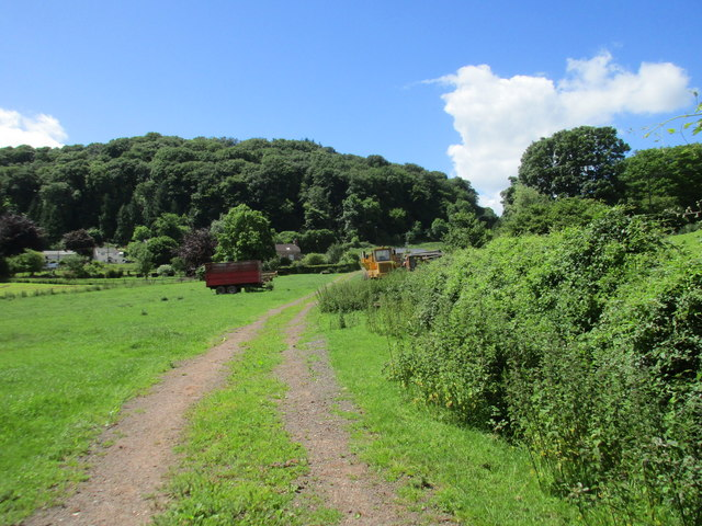 Track to Green Farm