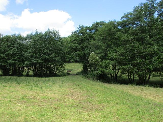 Footpath to Shapridge