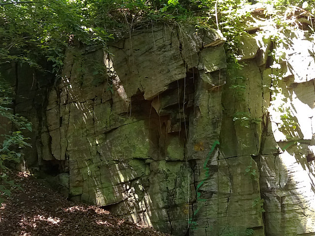 Bramley Fall stone
