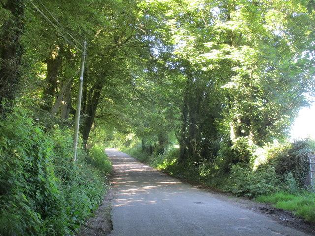 Road at Carriglusky