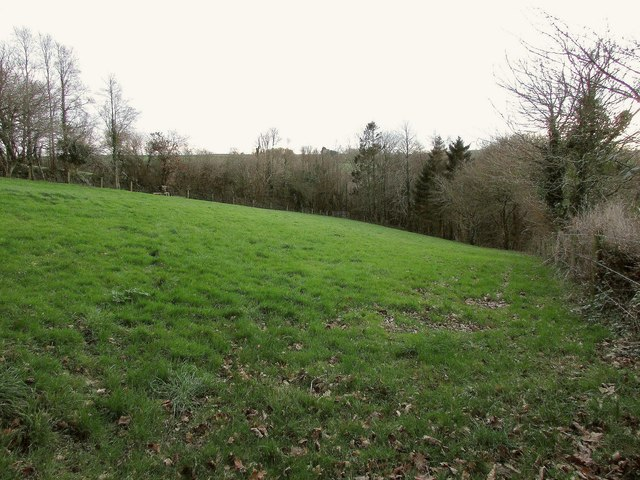 Field by Hawke's Wood