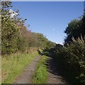 NS7976 : Road to Righead by Richard Webb