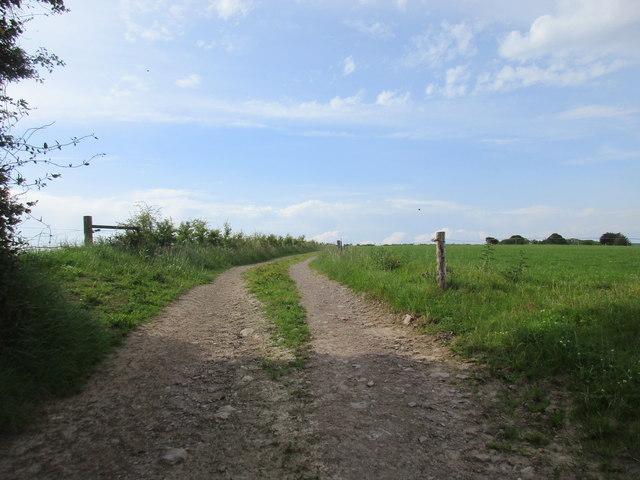 Farm track near Grange