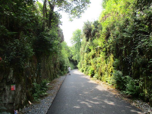 Approaching Ballyvoyle Tunnel
