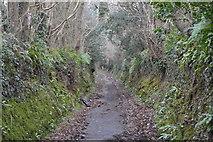 SX4760 : Southway Lane by N Chadwick