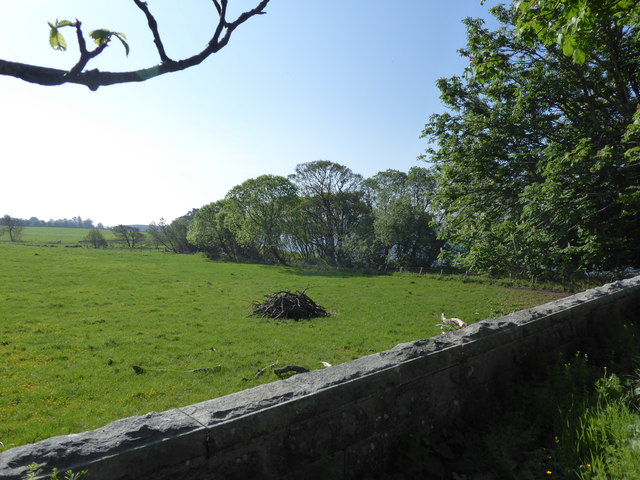 Corner of a field by Loch of Skene