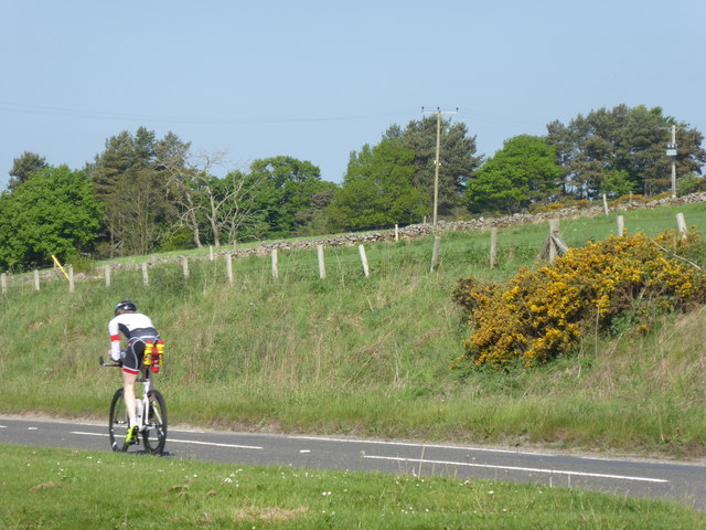 Cyclist on the A944