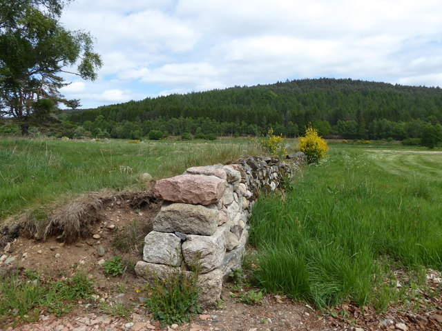 A dry stane wall at Potarch