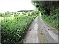 J3137 : Approaching the upper end of the Leitrim Road cul-de-sac by Eric Jones