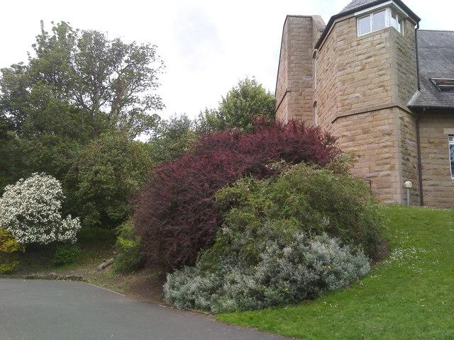 Garden off The Pends