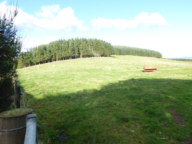 Pasture land to the north of Mains of Shiels
