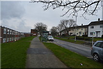 SX4861 : Clittaford Rd by N Chadwick