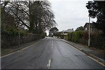 SX4960 : Powisland Drive by N Chadwick