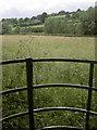 ST5663 : Gate to a meadow by Neil Owen