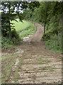 ST5662 : Farm road by Neil Owen