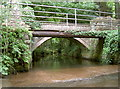 ST5663 : Double bridge by Neil Owen