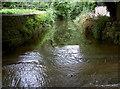 ST5663 : Back up the Brook by Neil Owen