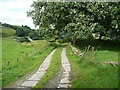 SE0626 : Halifax Bridleway 484 approaching the remains of Ramsden by Humphrey Bolton