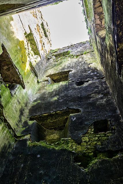 Castles of Munster: Ightermurragh, Cork - third visit (15)