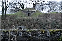 SX4859 : Crownhill Fort by N Chadwick