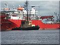 NT2677 : 'Seal Carr' in Western Harbour : Week 27