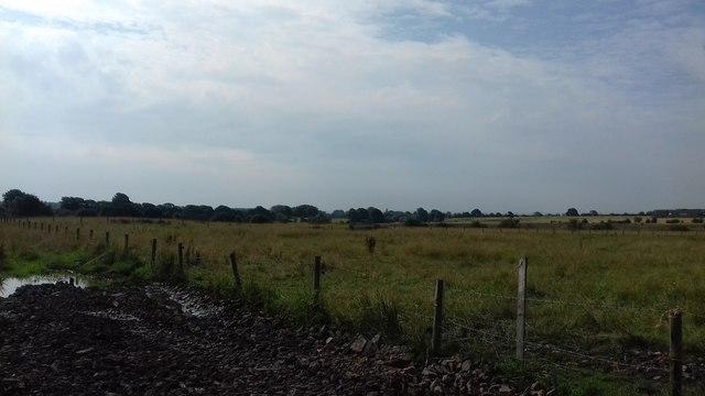 Farmland near Makants