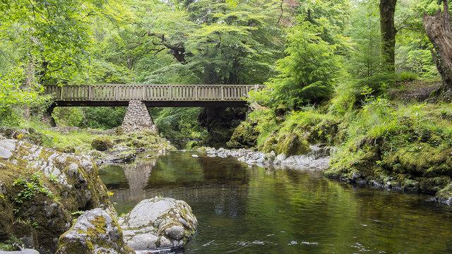 Bridge, Tollymore