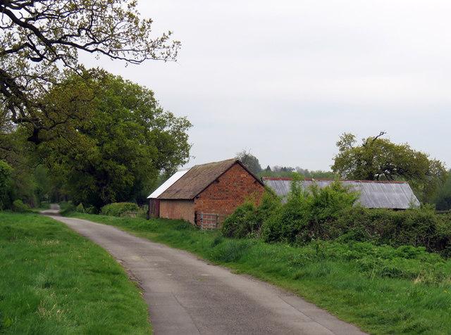 Sutton Lane towards Sutton Cheney
