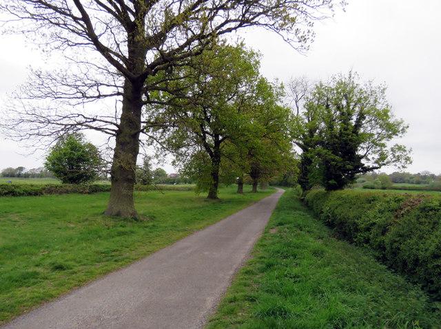 Sutton Lane towards Market Bosworth