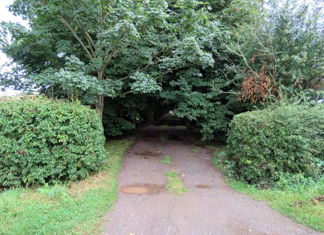 Driveway to Wolds Farm