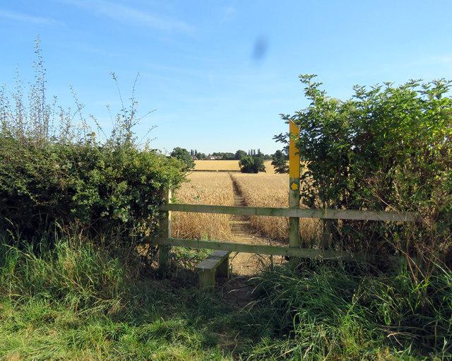 Footpath to Gaddesby