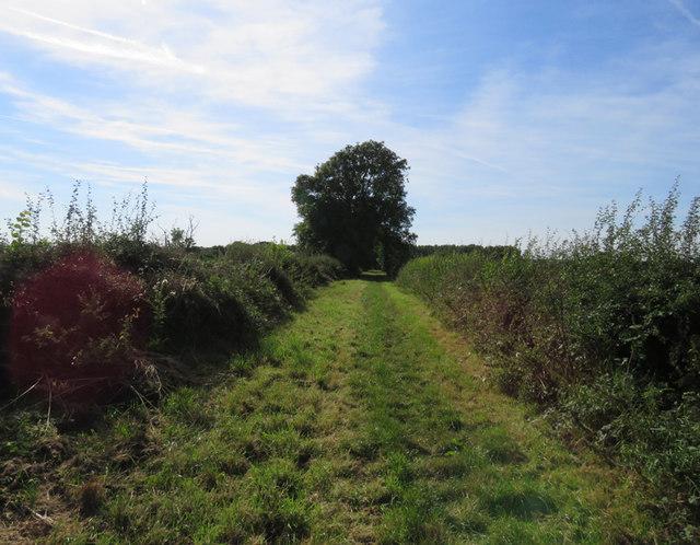 Towards Brooksby