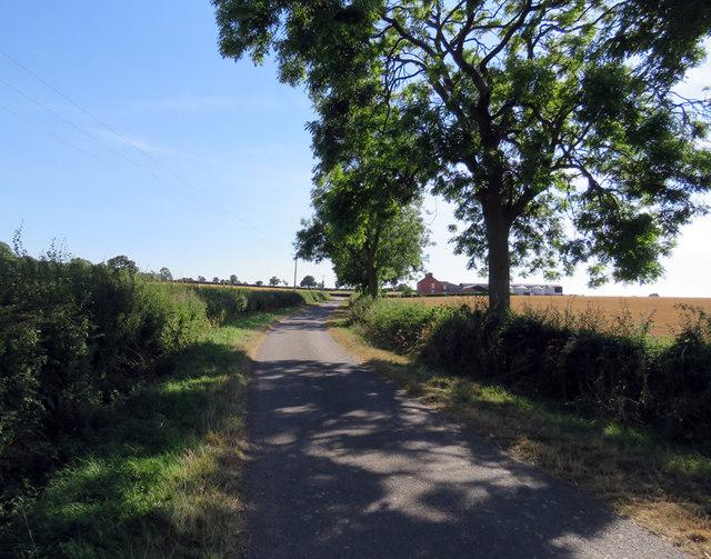 Gaddesby Lane passes Elm Cottages