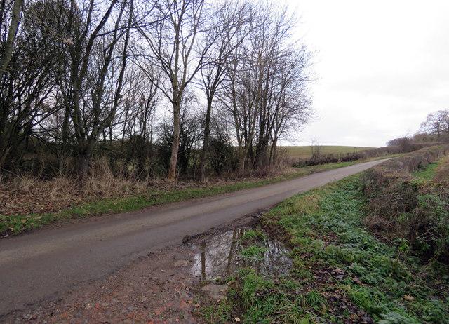 Wood Lane towards Owston