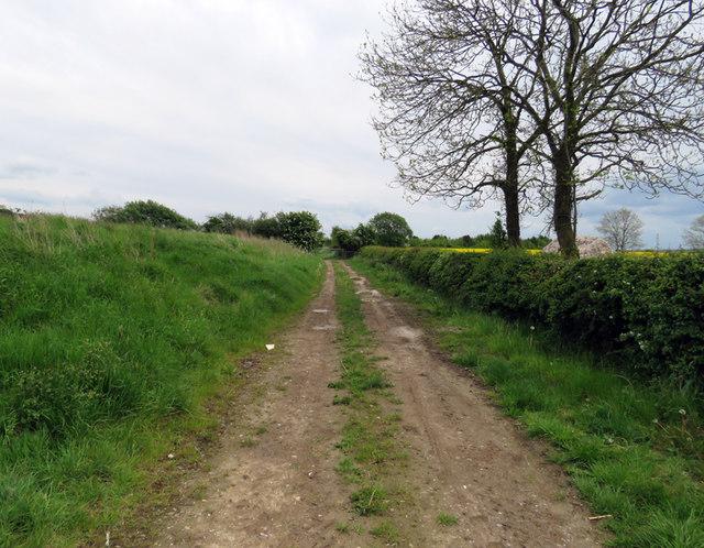 Alongside Hill Top reservoir on 18 May 2017
