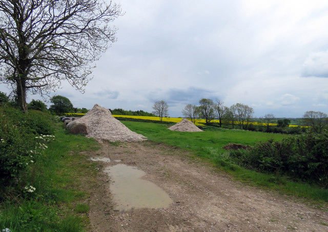 Mounds in a field