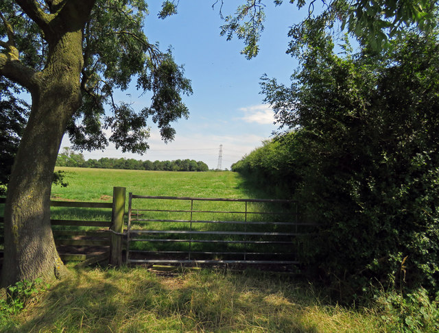 Field and hedges east of Gaddesby Lane