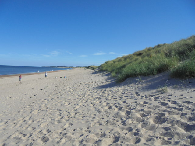Sand Dunes and Beach, Druridge Bay